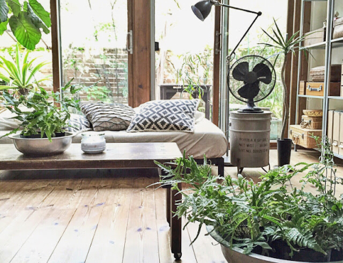 In Praise of the Conservatory – and the Reasons You Need One!