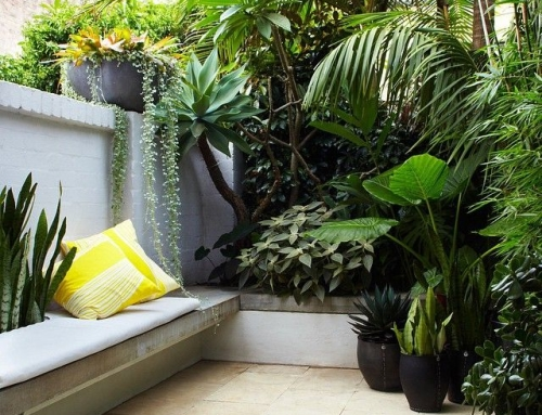 5 Easy Updates to Transform Your Garden This Spring