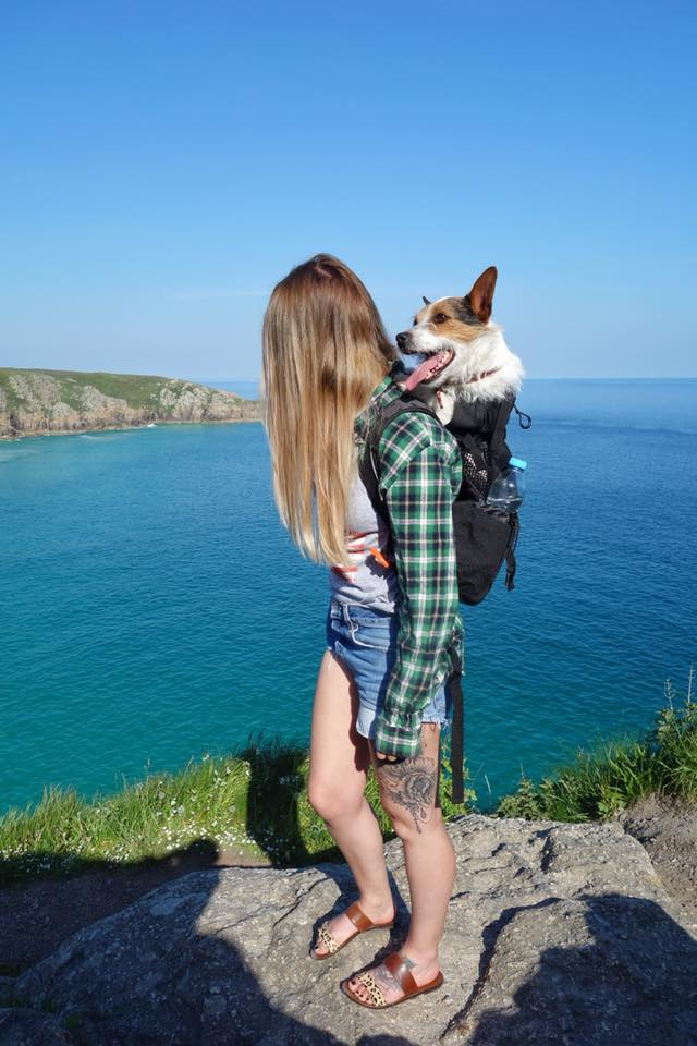3 Tips for Planning a Road Trip with Your Dog | UK Lifestyle Blog
