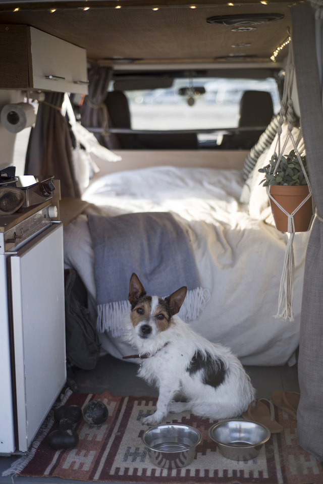 2 Month European Road-trip in our van (with our dog!): Travel Diary